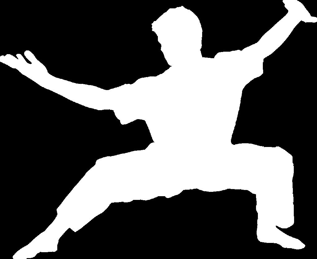 kungfu wushu
